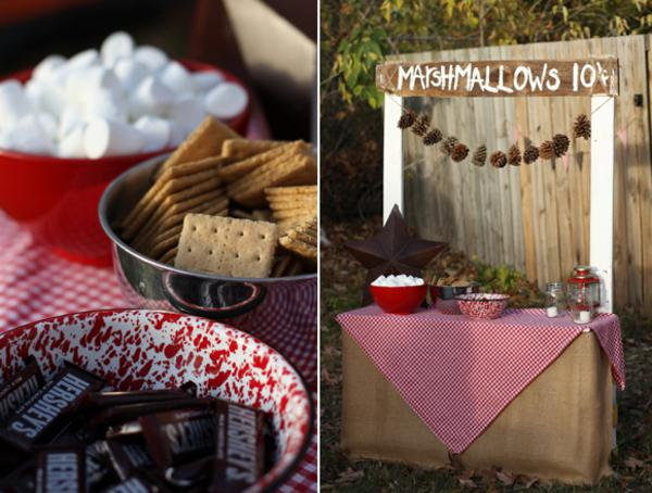 Kara S Party Ideas Camping Themed Girl And Boy Birthday