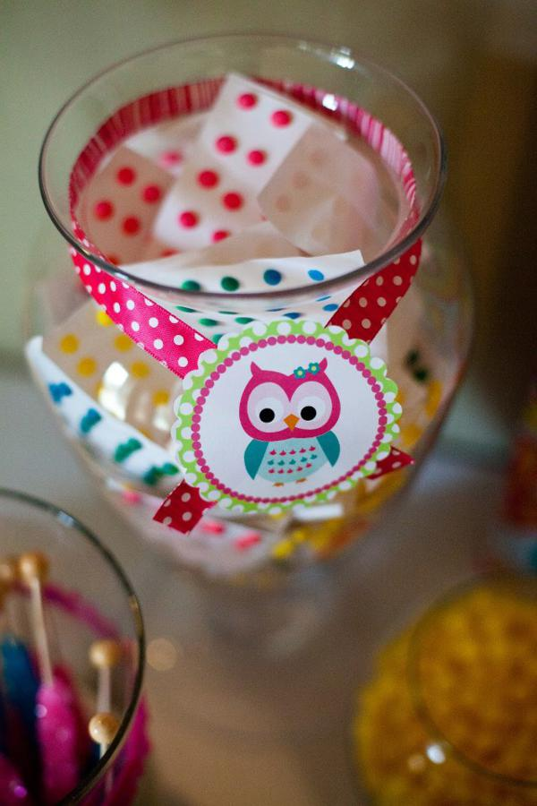 Owl Themed Party Supplies Lauren