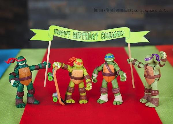 Ninja Turtle Birthday Cake Supplies