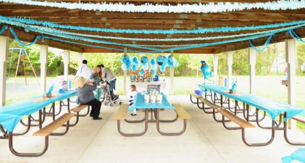 Kara's Party Ideas Chic Girl Blue DIY Cookie Monster ...