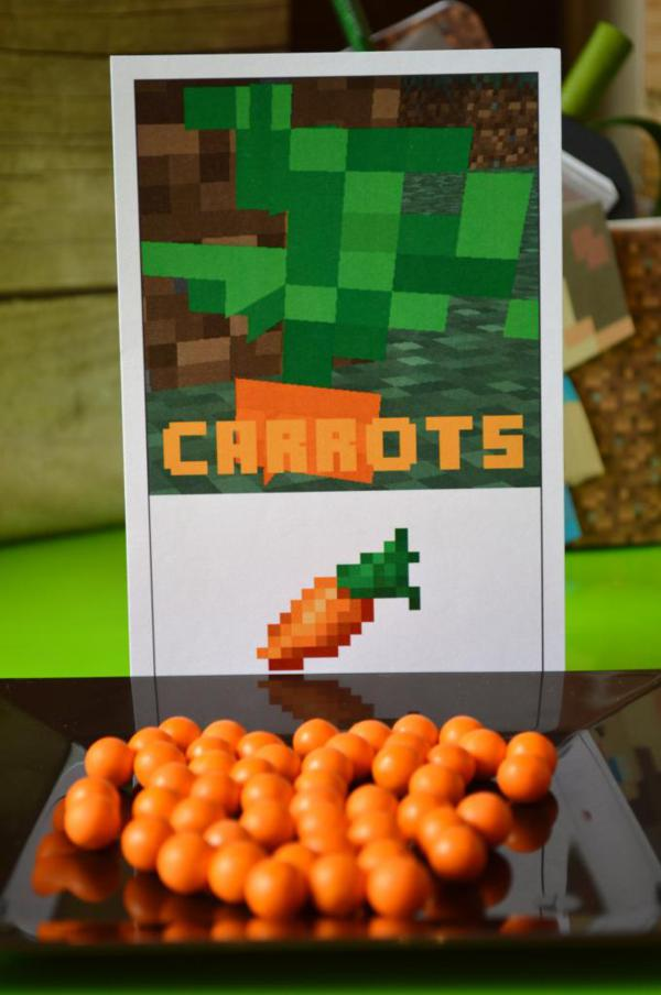 Vintage Minecraft Party via Kara's Party Ideas | KarasPartyIdeas.com #vintage #minecraft #mine #craft #video #game #party #ideas (4)